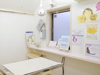 越谷どうぶつ病院photo